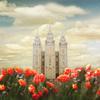 5112555 salt lake temple joyful day panoramic by mandy williams 2 cropb