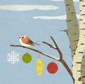 Sparrow_in_the_birch
