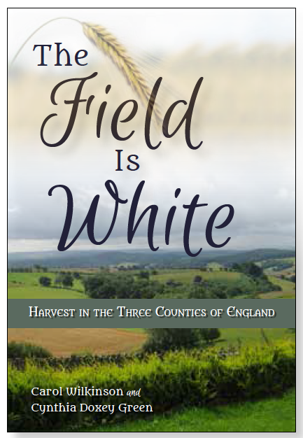 The field is white